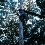 high-ropes-3